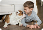 The Scientific Reason to Give a Child the Dog they're Begging for